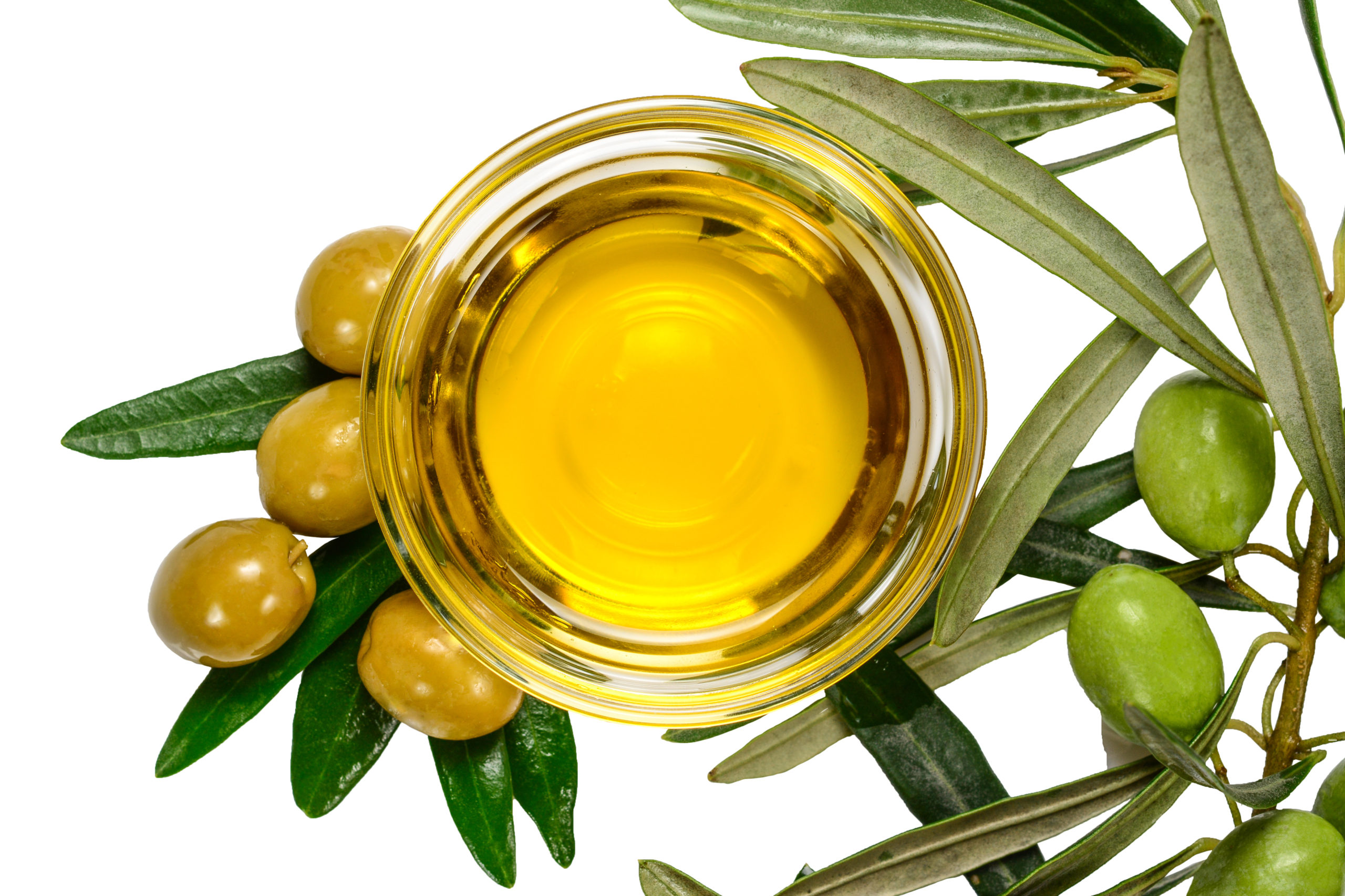 Olive Leaf Extract – A Simple Way To Boost Our Immune System